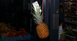 Prawdziwy ananas leci samolotem