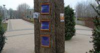 W Wilanowie będzie pierwsza biblioteka plenerowa